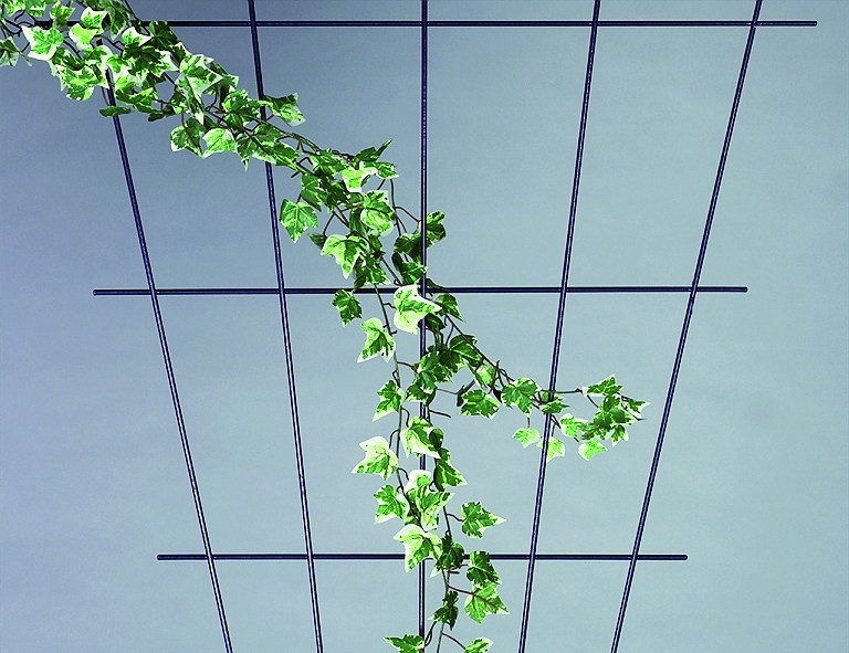 Siena Garden Rosenspalier fächerförmig ca. 150x75 cm braun, 5-strebig, mit SB-Reiter